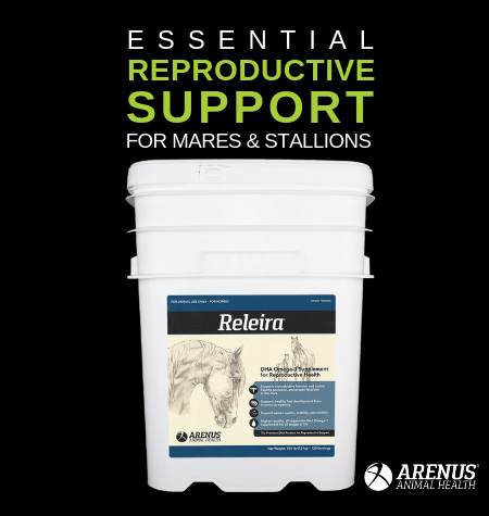 Arenus Horse Reproduction Support Health Supplement