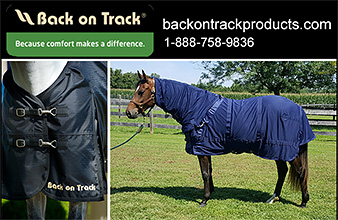 Therapeutic Horse Blankets by Back on Track.