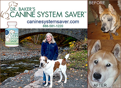 Dr. Baker's System Saver for Dogs!