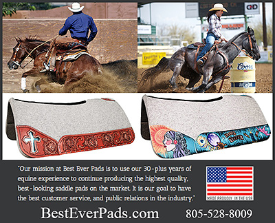 best Ever Saddle Pads