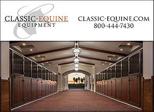 Classic Equine Equipment for Horses!