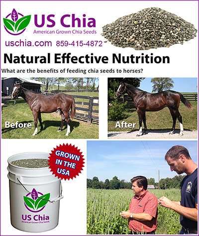 US Chia Seeds for Horses!