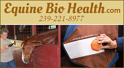 Equine Bio Health Bio Feedback Therapy
