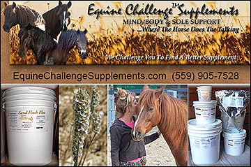 Sand Colic Prevention for Horses!