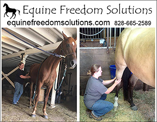 Equine Freedom Solutions