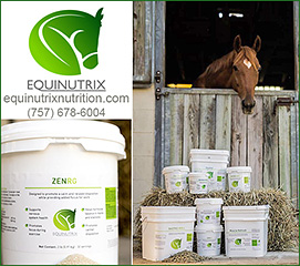 ZENRG Horse Calming and Horse Focus Health Supplement