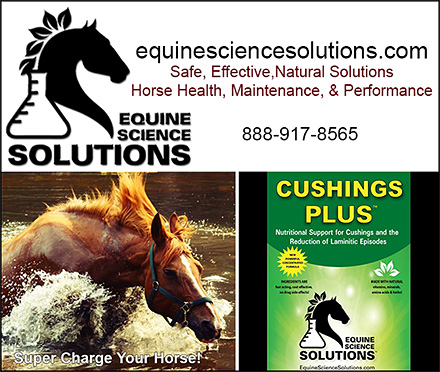Horse Cushings Nutritional Support