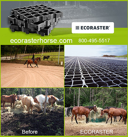 Ecoraster Equestrian Solutions