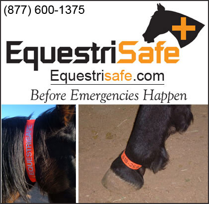 Horse Identification Products by EquestriSafe!