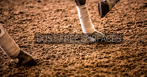 Dust Free Horse Areans Surfaces