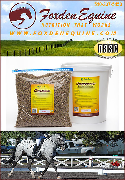 Soxden Equine Quiessence Metabolic Horse Supplement