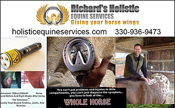 Richard's Holistic Equine Health Services