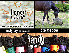 Handy Hay Nets for Horses