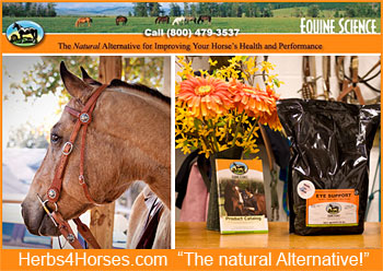 Equine Science Herbs4Horses.com