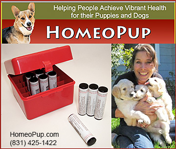 Homeopathic Products for Dogs