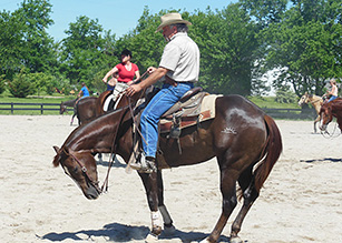VA Certified Horse Trainer Program