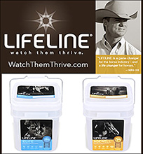 LifeLine Performance Horse Supplements