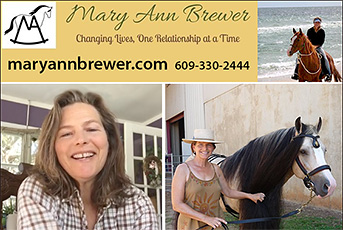 Mary Ann Brewer Relationship Based Horse Training