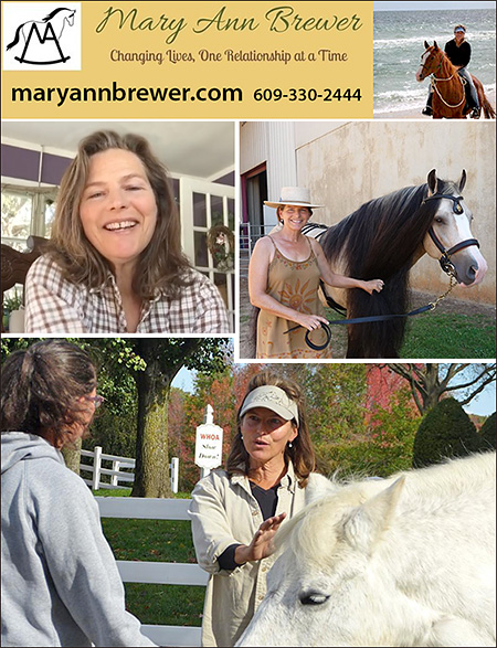 Mary Ann Brewer Horse Owner Coaching