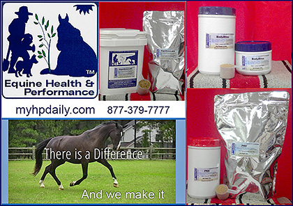 My HP Daily Horse Supplements