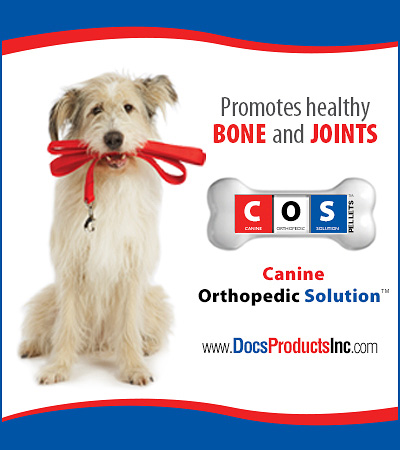 Canine Orthopedic Solution