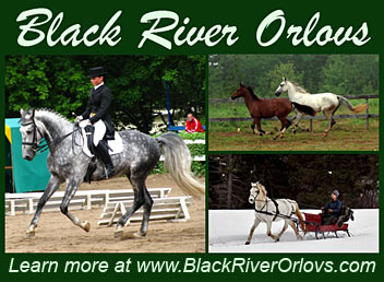 Black River Orlovs
