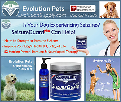 Dog Seizure Supplements