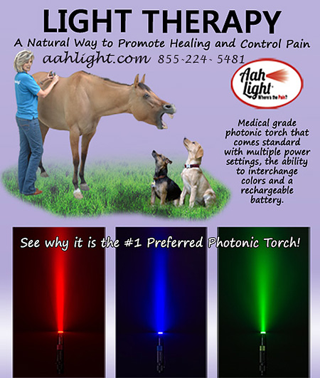 Light Therapy for Horses from Aah Light!