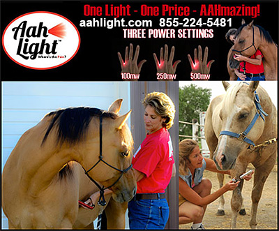 Aah Light Light Therapy for Horses