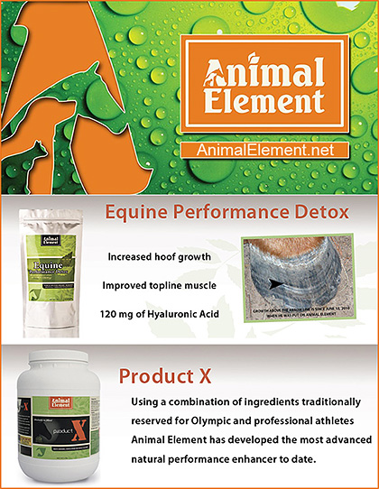 Animal Element Detoxification Horse Supplements
