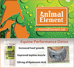 Animal Element Horse Supplements