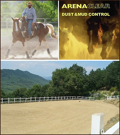 Controlling horse Arena Dust