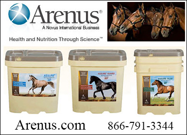 Arenus Horse Health Supplements