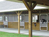 Selecting Horse Stalls