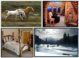 Horse Art and Western Lifestyle Furniture