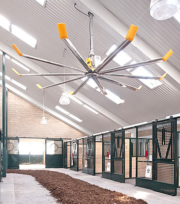 Using fans to keep horses comfortable and warmer.