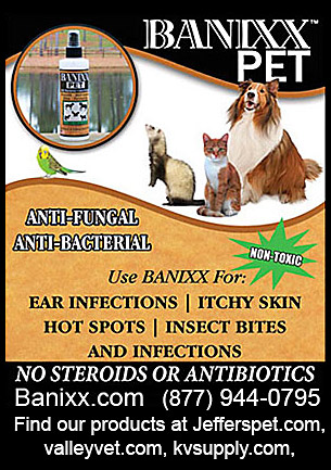 BANIXX PET anti fungal products for dogs.
