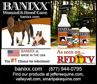 Banixx Horse Wound and Hoof Care