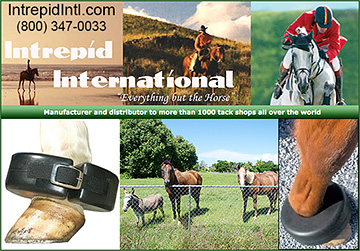 Bed Sore Boot by Intrepid International Horse Products