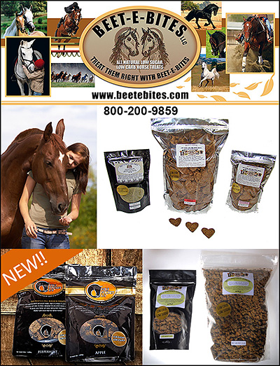 Beete E Bites Horse Treats