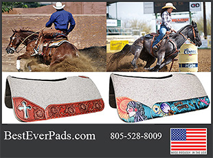 Best Ever Horse Saddle Pads