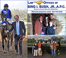 Law Offices of Bing Bush, Horse Lawyer