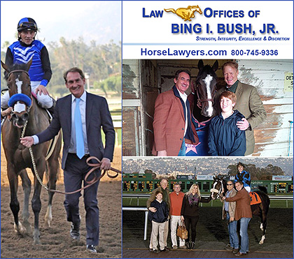 Law Offices of Bing Bush