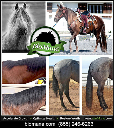BioMane Mane and Tail Growth Supplements