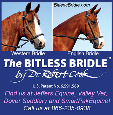The Bitless Bridle