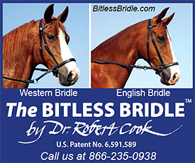 The Bitless Bridle for Horses