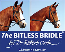 The Bitless Bridle by Dr Cook