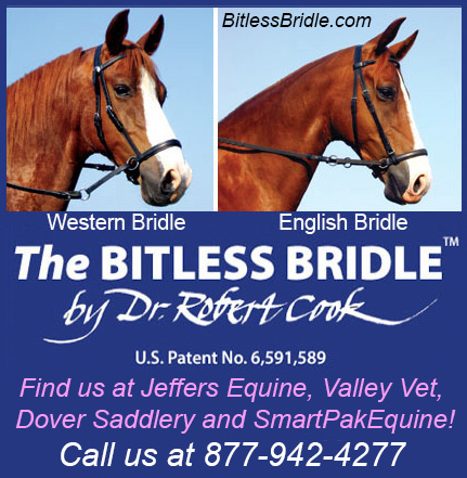 The Bitless Horse Bridle