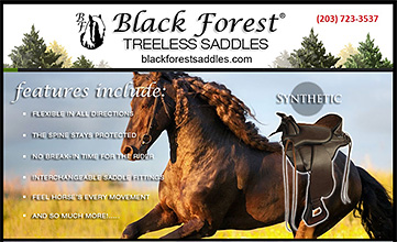 Treeless Horse Saddles by Black Forest Treeless Saddles