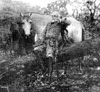 Wartime photograph of General Lee with Traveler.